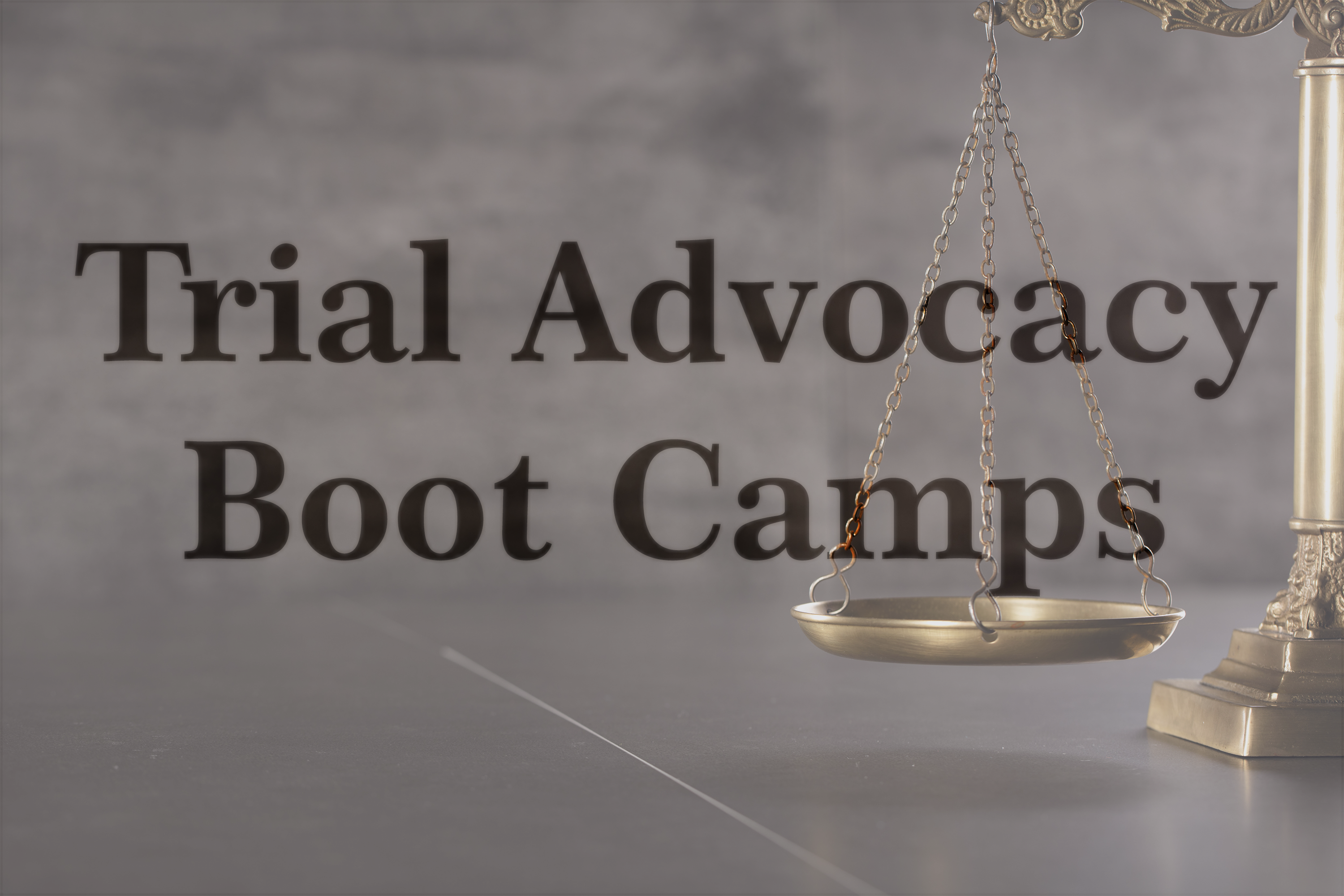 Trial Advocacy Boot Camps
