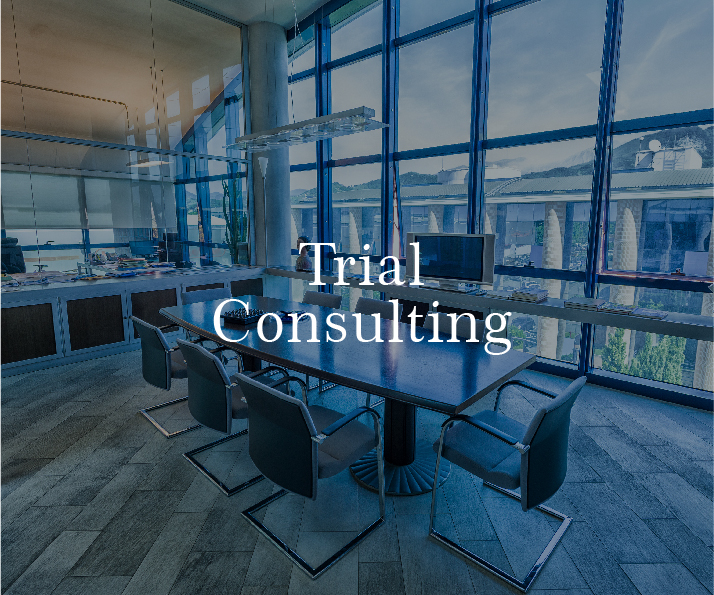 Trial Consulting